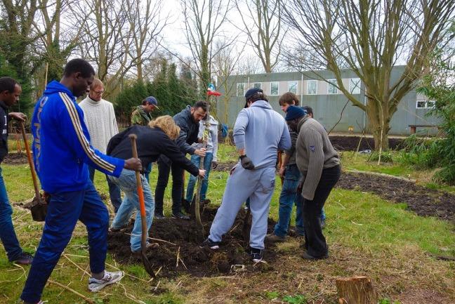 Voedselbos aanleg (deel 2): Plantdag (met fotogallerij)